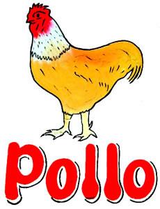 137_pollo.jpg