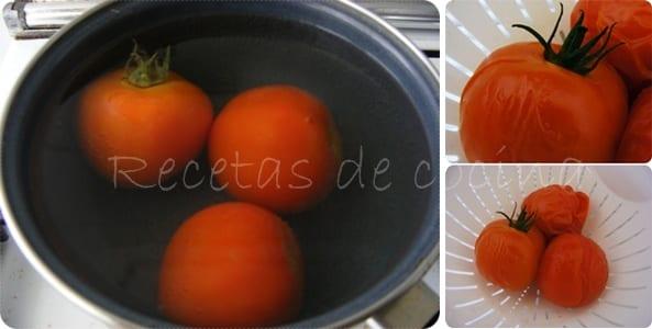 Insalata di pasta al pomodoro fresco e basilico