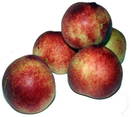 fruta-nectarina