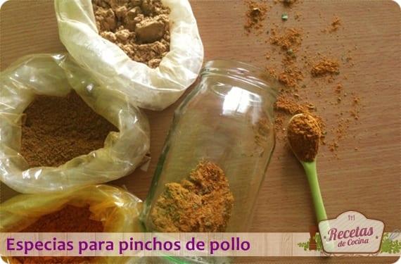 Mezcla de especias para pinchos de pollo, receta tradicional