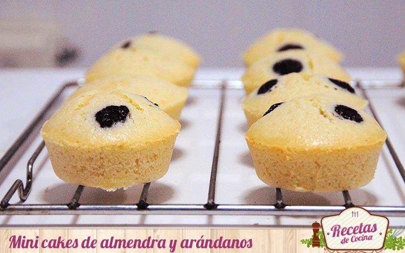 Mini cakes de almendra y arándanos